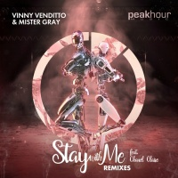 Vinny Venditto, Mister Gray Feat Chanel Claire Stay With Me Remixes