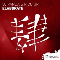 DJ Panda & Ricci Jr Elaborate