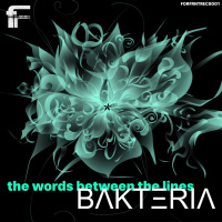 Bakteria The Words Between The Lines