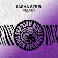 Sasha Steel Velvet