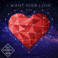 Bsrb I Want Your Love