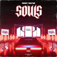 Perry Wayne Souls