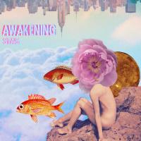 Stas Awakening