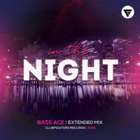 Bass Ace In The Night