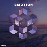 Bmotion, Flowanastasia Give You Up